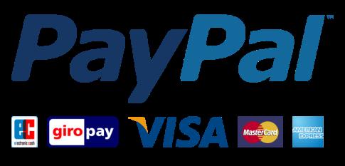 paypal_big-1